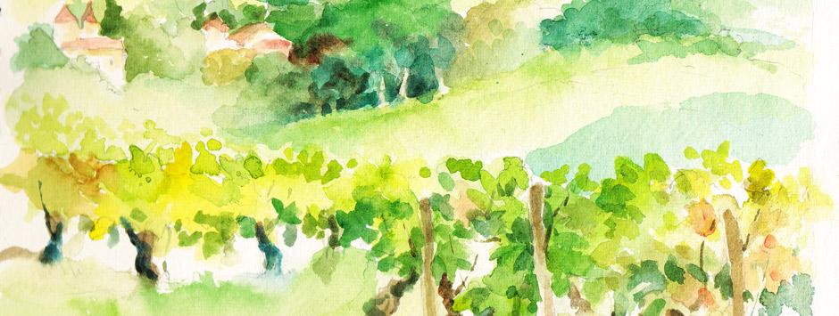 vineyard-wtrcolr-2-bis1